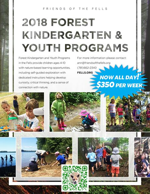 Forest Kindergarten flyer, with a collage of children playing in the woods