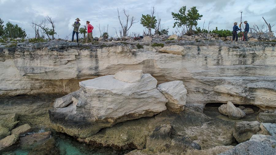 A new study of shorelines in the Bahamas may change estimates of past sea levels. Here, some of the authors survey coastal rocks on the archipelago's Crooked Island formed when sea levels were higher. (Blake Dyer)