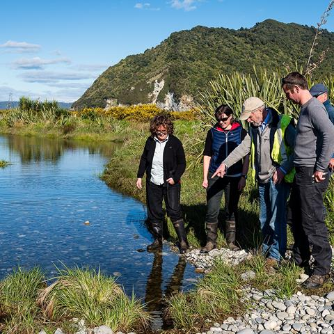 West Coast Tai Poutini Conservation Board surveying whitebait - Cobden Island.  Photo: John Reid