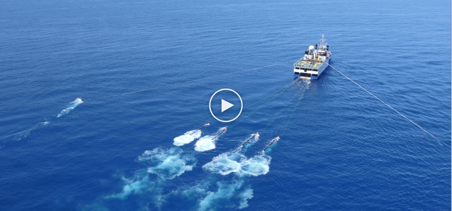 North West Shoals to Shore seismic experiment video