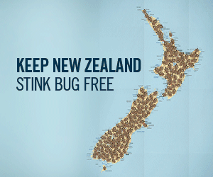 Keep New Zealand Stink Bug Free