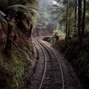Let the West Coast Wilderness Railway lead you to new adventures on Tasmania's wild West Coast.