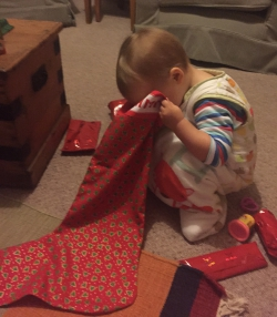 Sammy checking that his Christmas stocking doesn't have any more presents in it.