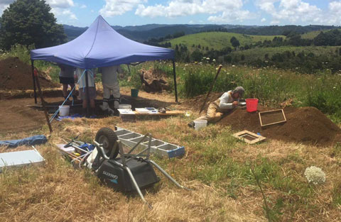 A tent covers an excavated grave. Image: Andrew Blanshard.