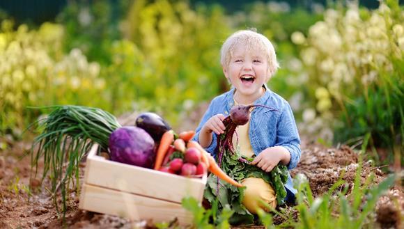 Spring vegetables in hands