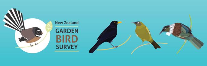NZ Garden Bird Survey