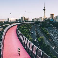 A picture of the Auckland skyline