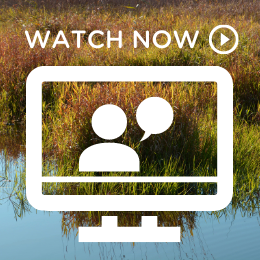 Watch the N8 and National Parks webinar