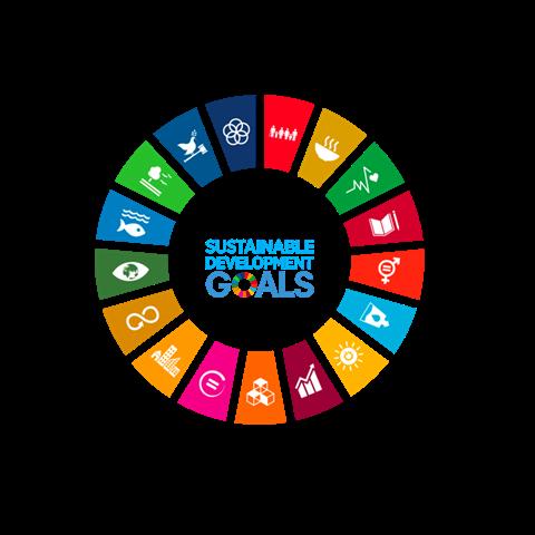 img: SDG Wheel