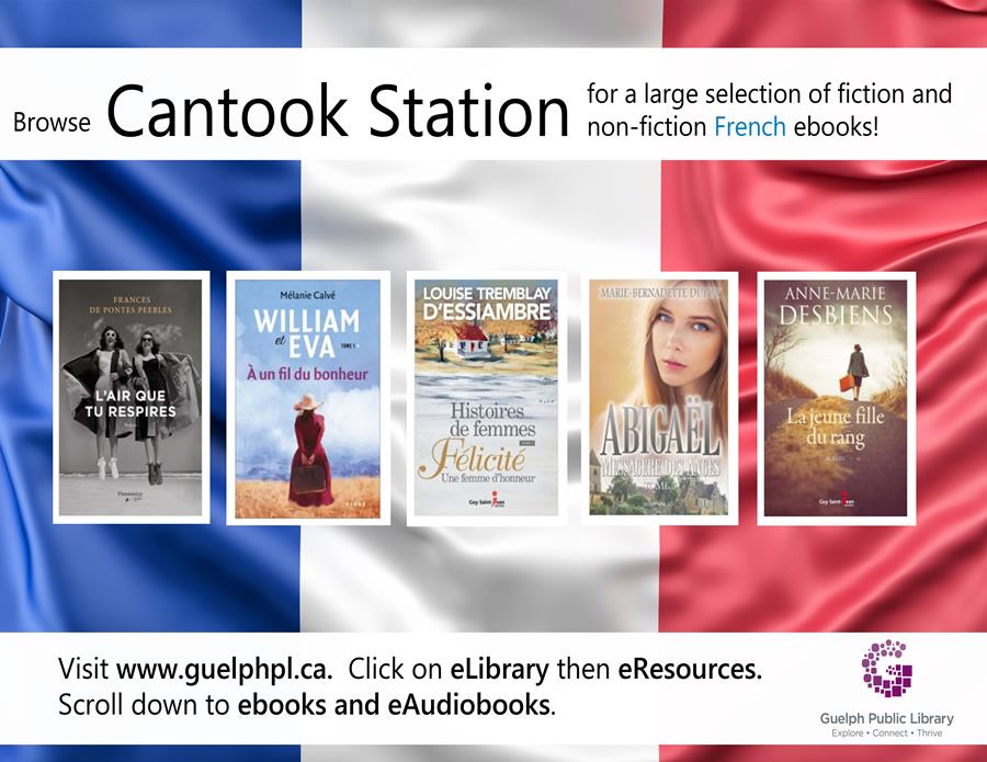 Check out this online French eResource, Cantook Station, for a large selection of fiction and non-fiction French eBooks.