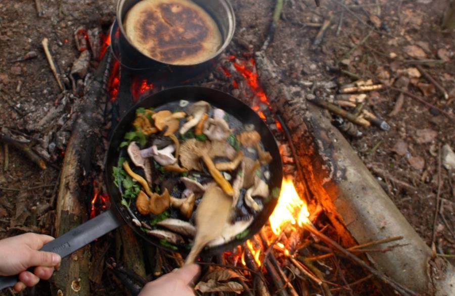 Wild Food & Foraging Autumn Weekend