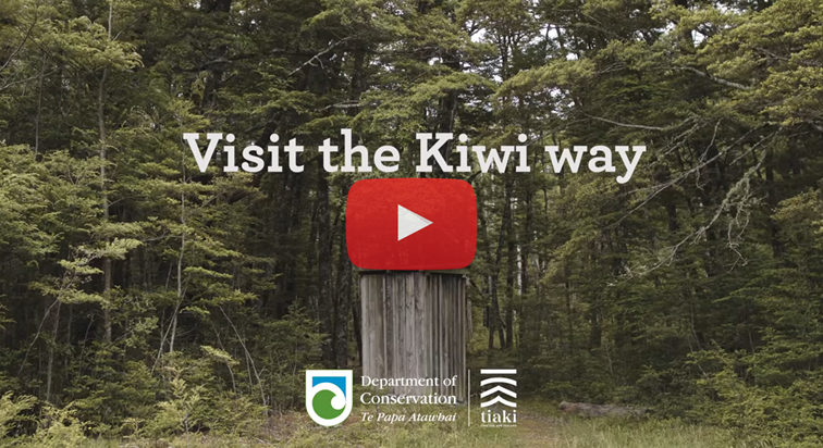 Visit the Kiwi way - image of the video