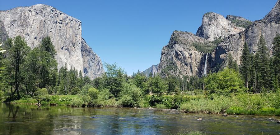 A wide-angle shot of a luscious Valley View, featuring the flowing green Merced River, granite rock formations, a massive waterfall, and clear blue skies.