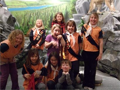 Brownies in 'Our Natural World'