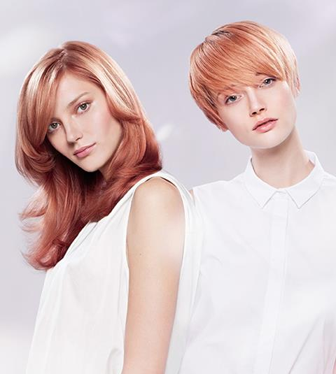 Cut & Colour Offer