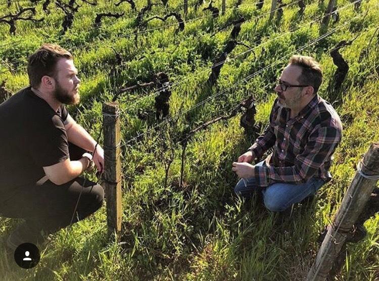 Tyler Canning in a vineyard in Marsannay