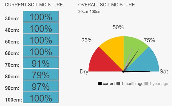 Raywood speedos current soil moisture 100%