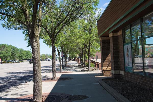 98th Street sidewalk near Lyndale Avenue