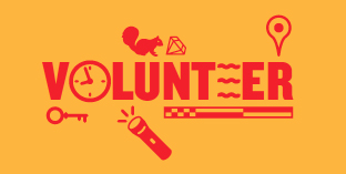 Volunteer for Northern Spark