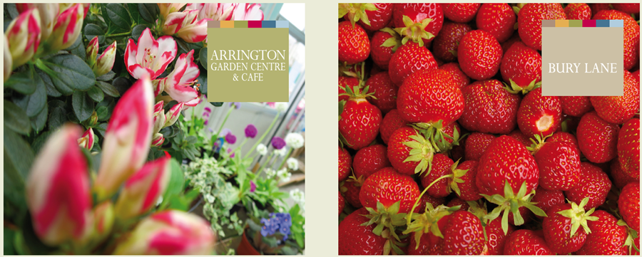 Bury Lane Farm Shop and Arrington Garden Centre & Cafe July 2017