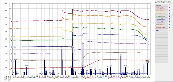 Youanmite individual sensor soil moisture graph has been saturated since May but moisture depletion from sensor 30-70cm during spring.