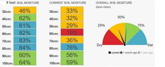 Birchip speedos moisture currently 37%