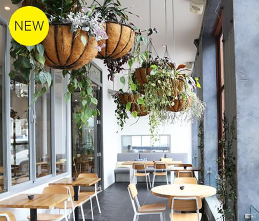We're California dreaming at this bright, new all-day eatery