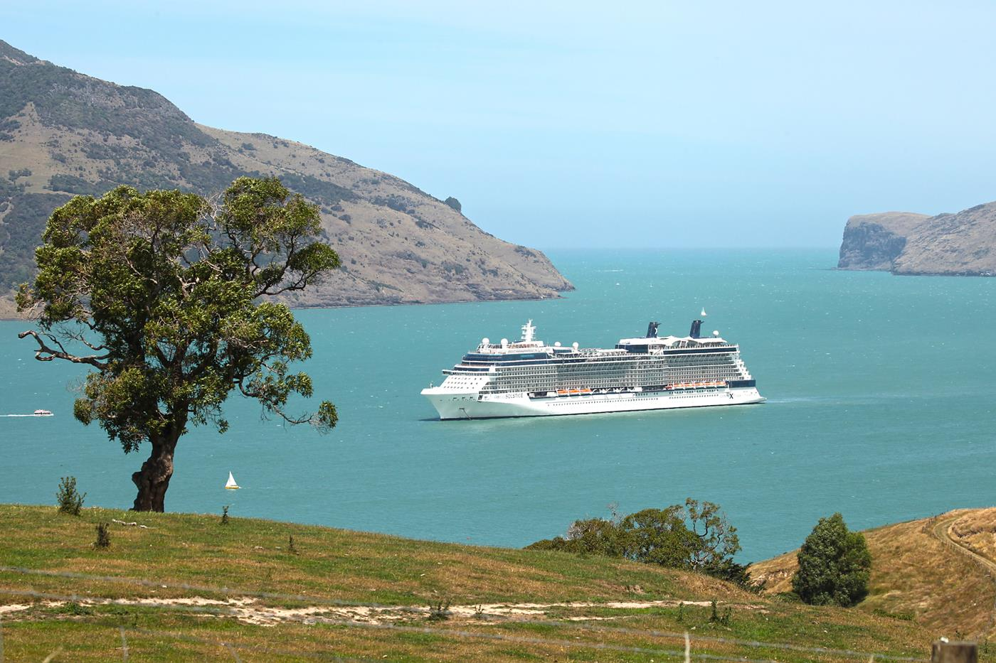 A cruise ship in the harbour