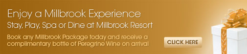 Enjoy a Millbrook Experience