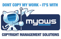 Display a Myows banner on your website