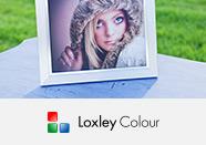 Loxley Colour - Desk Frame