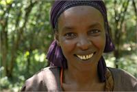 Abebech Argeta, Fairtrade Coffee Farmer