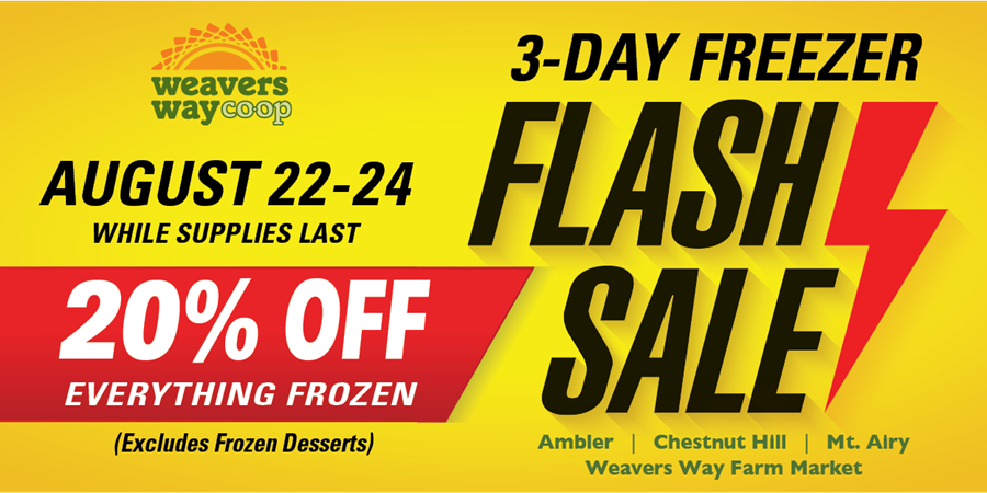 Freezer Flash Sale