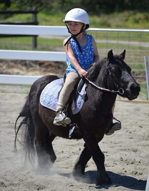 Equestrian Grassroots