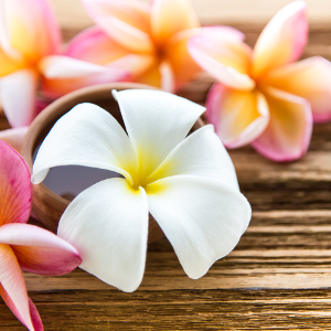 What is Hawaiian Massage?