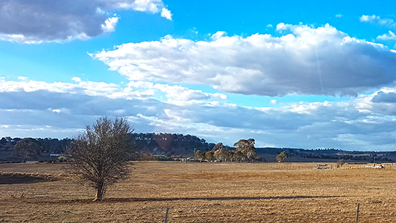 Drought NSW North West Aug 2019