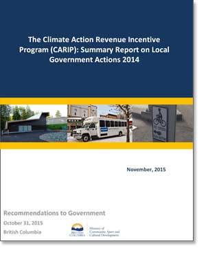 CARIP Public Report 2014 Summary