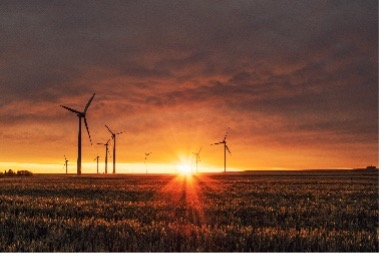 Windmills on a field during sunset