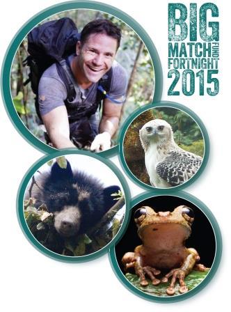 Big Match Fortnight 2015 logo and images. © Steve Backshall (image of Steve) / Fundación Ecominga (Spectacled Bear and Black-and-chestnut Eagle) / Tropical Herping.com (frog).