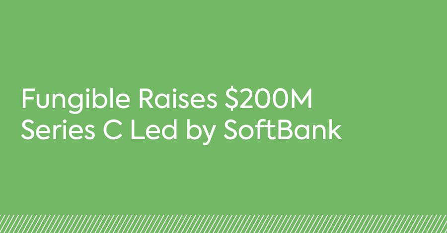 Fungible Raises $200M Series C Led by SoftBank