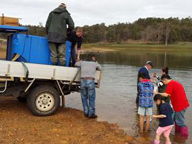 Buddhists release rainbow trout at Harvey Dam
