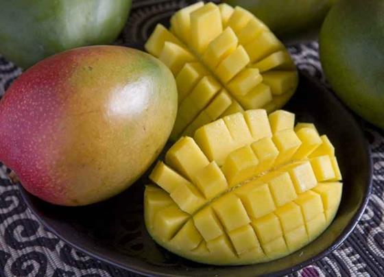 kent mangos