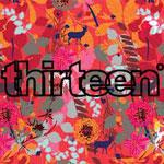 Thirteen Degrees