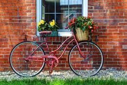 Bike w Basket - Kevin Fay