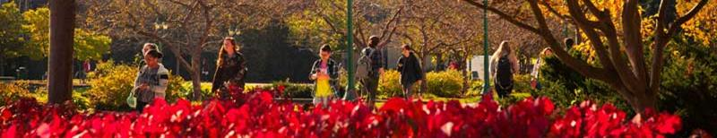 Students on campus in fall foliage