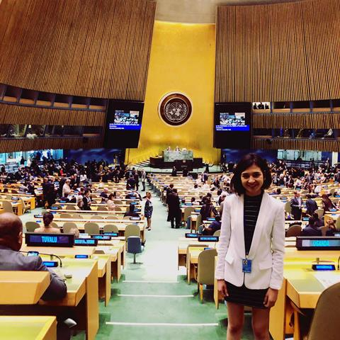 Image of Heidi La Paglia standing in United Nations Un General Assembly.