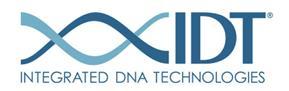 img: IDT Logo