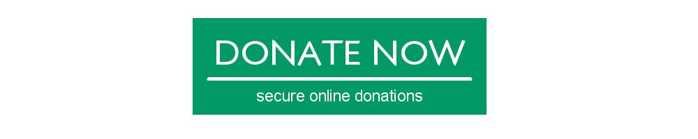 https://donatenow.networkforgood.org/igem?code=7498265317
