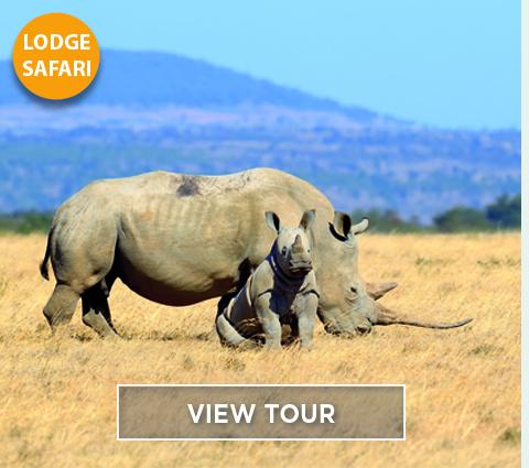 Kenya Wildlife Week