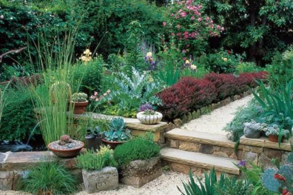 Washington DC Garden